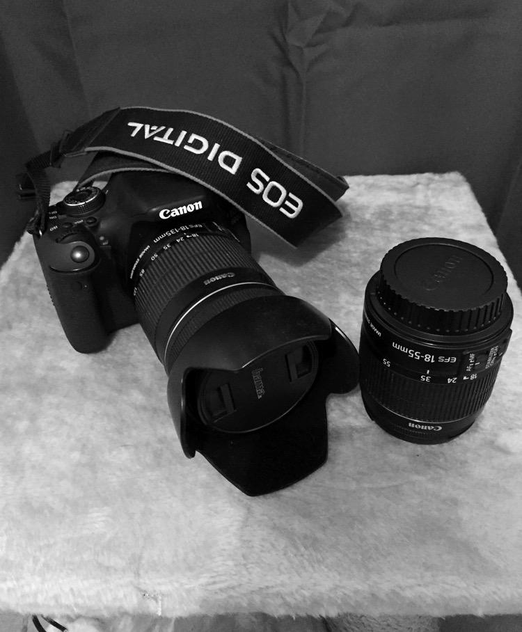 Canon EOS 600D mon premier reflex et détails