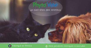 Phyto Véto dédié au bien être animal et à la phytothérapie